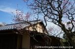 03Feb14 Atami MOA Museum of Art 031