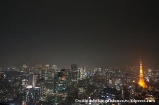 03Feb14 Tokyo 015