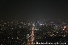 03Feb14 Tokyo 020