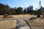 05Feb14 Tokyo Kiyosumi Teien 005
