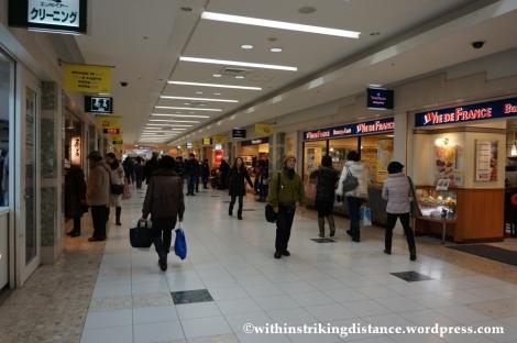 06Feb14 Sapporo Yuki Matsuri 002