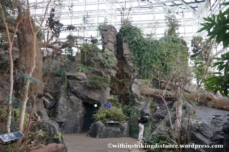 10Feb14 Osaka Aquarium Kaiyukan 003