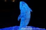 10Feb14 Osaka Aquarium Kaiyukan 030