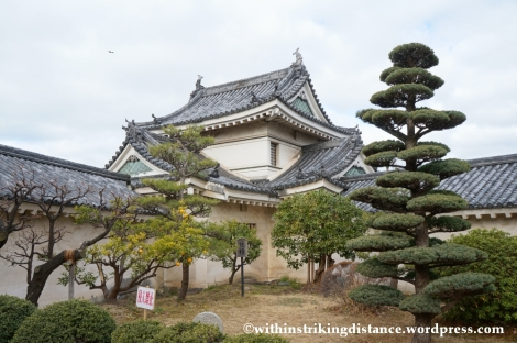 11Feb14 Wakayama 011