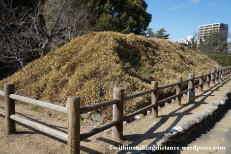 12Feb14 Yuzuki Castle Dogo Park Matsuyama Ehime Shikoku Japan 008
