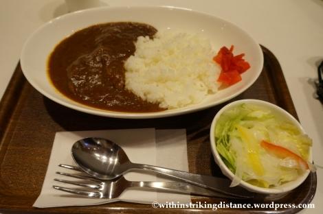 15Feb14 Curry Rice Narita Airport Tokyo Japan 008
