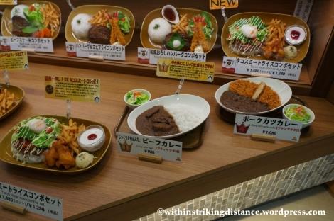 15Feb14 Curry Rice Narita Airport Tokyo Japan 009