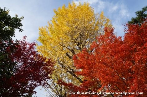 20Nov14 009 Autumn Byodo-in Uji Kyoto Kansai Japan