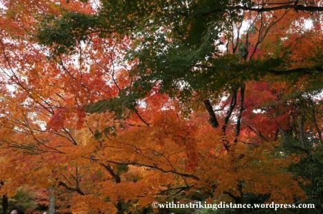 20Nov14 020 Autumn Byodo-in Uji Kyoto Kansai Japan