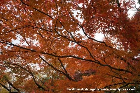 20Nov14 021 Autumn Byodo-in Uji Kyoto Kansai Japan