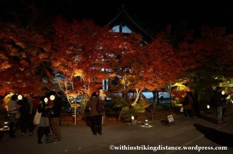 20Nov14 002 Autumn Leaves Eikando Zenrinji Kyoto Kansai Japan