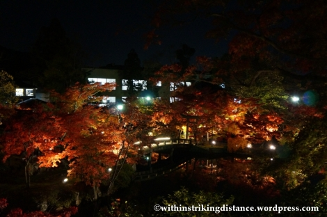 20Nov14 003 Autumn Leaves Eikando Zenrinji Kyoto Kansai Japan