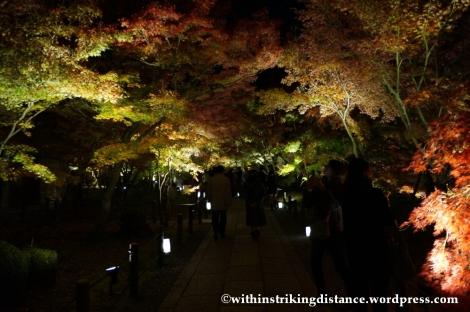 20Nov14 006 Autumn Leaves Eikando Zenrinji Kyoto Kansai Japan