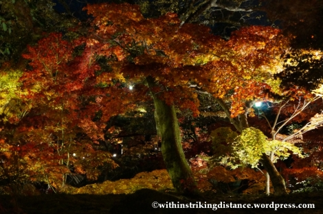 20Nov14 007 Autumn Leaves Eikando Zenrinji Kyoto Kansai Japan