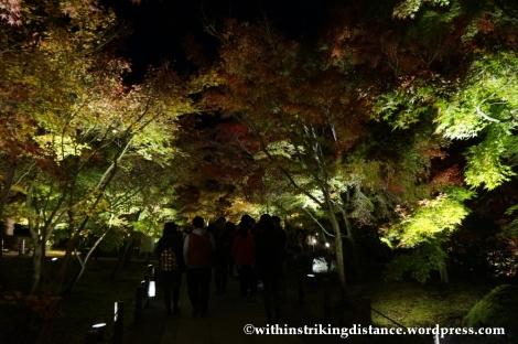 20Nov14 008 Autumn Leaves Eikando Zenrinji Kyoto Kansai Japan