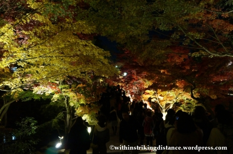 20Nov14 009 Autumn Leaves Eikando Zenrinji Kyoto Kansai Japan