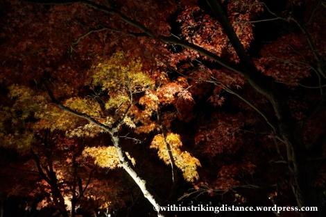 20Nov14 010 Autumn Leaves Eikando Zenrinji Kyoto Kansai Japan