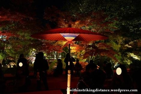 20Nov14 011 Autumn Leaves Eikando Zenrinji Kyoto Kansai Japan