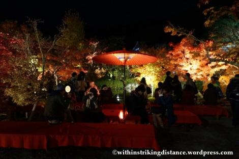 20Nov14 013 Autumn Leaves Eikando Zenrinji Kyoto Kansai Japan