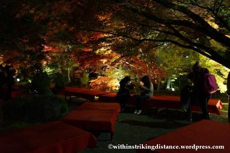 20Nov14 014 Autumn Leaves Eikando Zenrinji Kyoto Kansai Japan