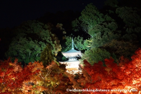 20Nov14 016 Autumn Leaves Eikando Zenrinji Kyoto Kansai Japan