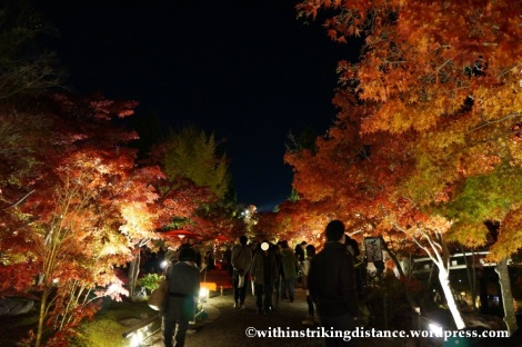 20Nov14 017 Autumn Leaves Eikando Zenrinji Kyoto Kansai Japan