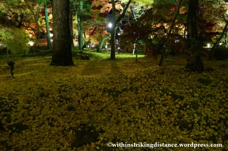 20Nov14 018 Autumn Leaves Eikando Zenrinji Kyoto Kansai Japan