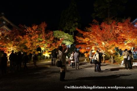 20Nov14 020 Autumn Leaves Eikando Zenrinji Kyoto Kansai Japan