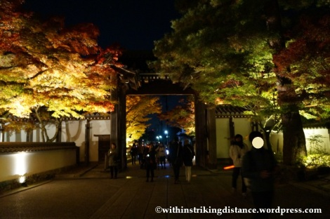 20Nov14 022 Autumn Leaves Eikando Zenrinji Kyoto Kansai Japan