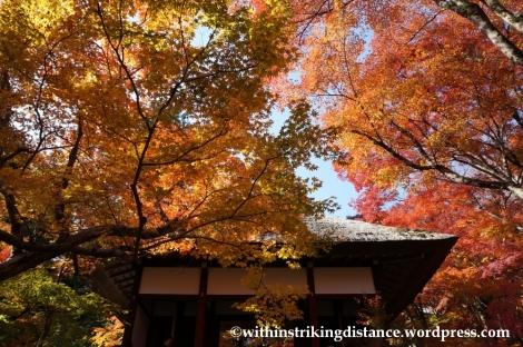 22Nov14 001 Autumn Jojakko-ji Arashiyama Kyoto Kansai Japan