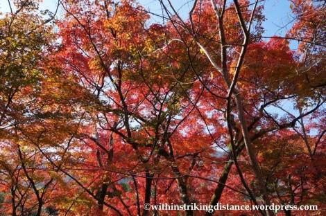 22Nov14 002 Autumn Tenryu-ji Arashiyama Kyoto Kansai Japan