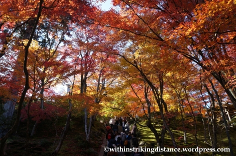 22Nov14 003 Autumn Jojakko-ji Arashiyama Kyoto Kansai Japan