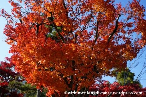 22Nov14 003 Autumn Tenryu-ji Arashiyama Kyoto Kansai Japan
