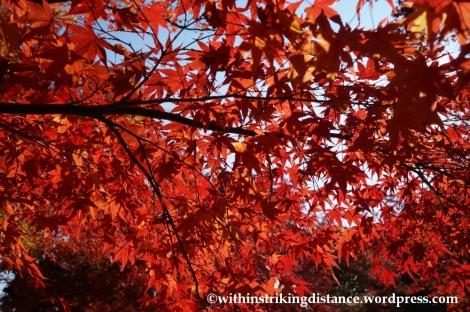 22Nov14 004 Autumn Jojakko-ji Arashiyama Kyoto Kansai Japan