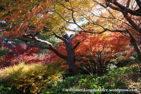22Nov14 004 Autumn Okochi Sanso Arashiyama Kyoto Kansai Japan