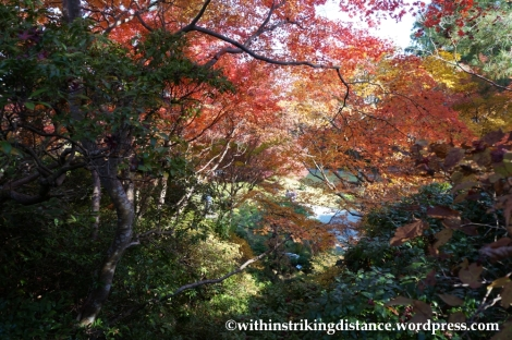 22Nov14 006 Autumn Okochi Sanso Arashiyama Kyoto Kansai Japan
