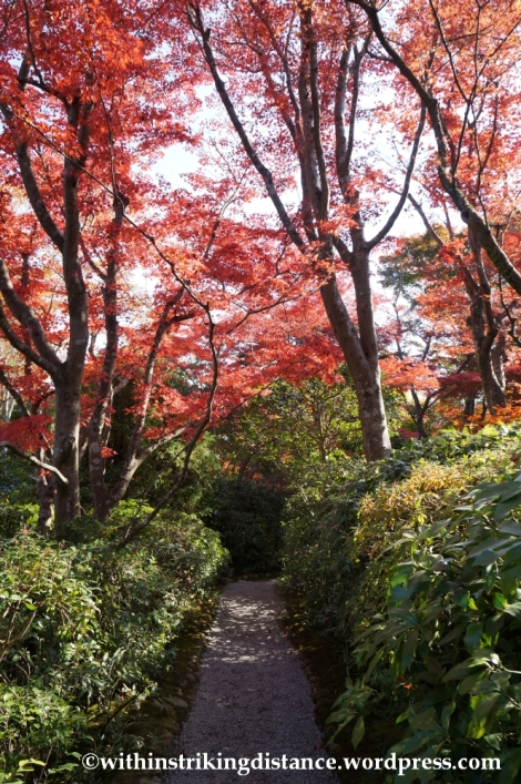 22Nov14 007 Autumn Okochi Sanso Arashiyama Kyoto Kansai Japan
