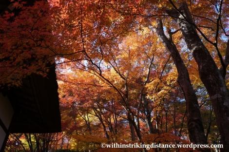 22Nov14 009 Autumn Jojakko-ji Arashiyama Kyoto Kansai Japan