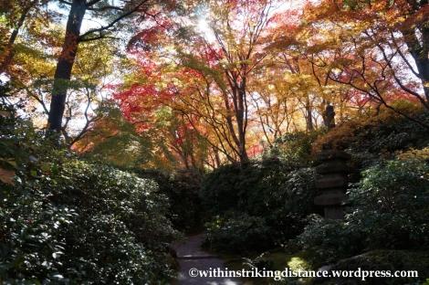 22Nov14 009 Autumn Okochi Sanso Arashiyama Kyoto Kansai Japan