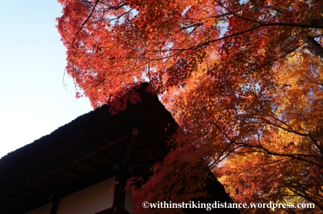 22Nov14 010 Autumn Jojakko-ji Arashiyama Kyoto Kansai Japan