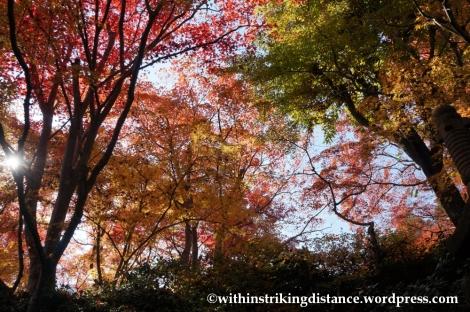 22Nov14 010 Autumn Okochi Sanso Arashiyama Kyoto Kansai Japan