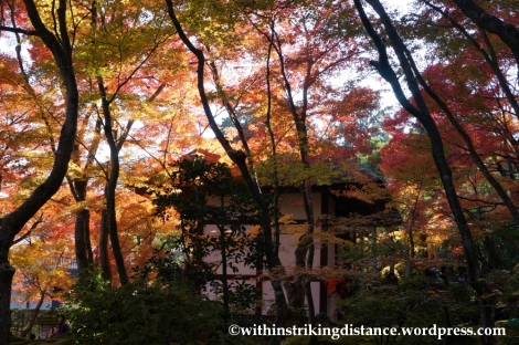 22Nov14 012 Autumn Jojakko-ji Arashiyama Kyoto Kansai Japan