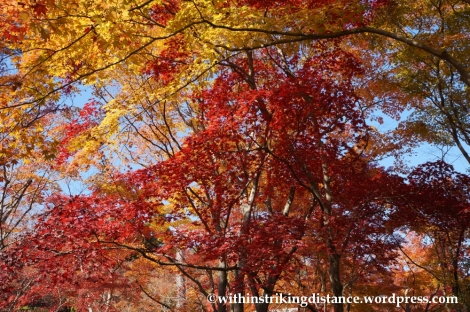 22Nov14 012 Autumn Okochi Sanso Arashiyama Kyoto Kansai Japan