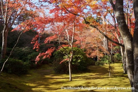 22Nov14 013 Autumn Okochi Sanso Arashiyama Kyoto Kansai Japan