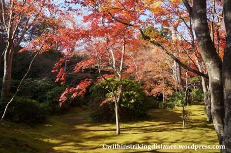 22Nov14 013 Autumn Okochi Sanso Arashiyama Kyoto Kansai Japan