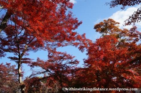 22Nov14 013 Autumn Tenryu-ji Arashiyama Kyoto Kansai Japan