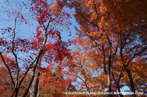 22Nov14 014 Autumn Okochi Sanso Arashiyama Kyoto Kansai Japan