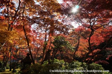 22Nov14 016 Autumn Okochi Sanso Arashiyama Kyoto Kansai Japan