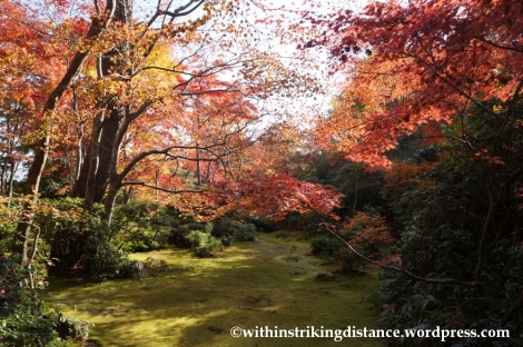 22Nov14 017 Autumn Okochi Sanso Arashiyama Kyoto Kansai Japan