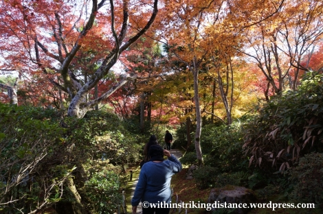 22Nov14 022 Autumn Okochi Sanso Arashiyama Kyoto Kansai Japan